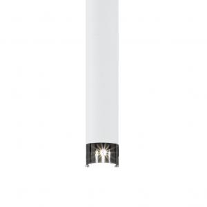 93798 Рапаро